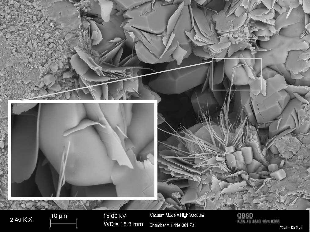 SEM Image of clay minerals and halite